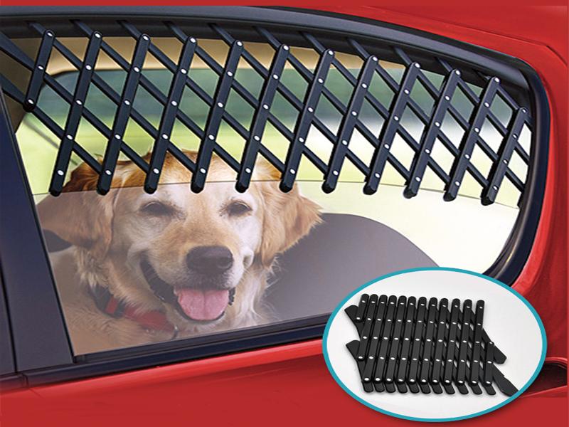 Frischluftgitter für Autofenster